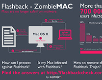 content/en-in/images/repository/isc/infographics-zombie-mac-thumbnail.jpg