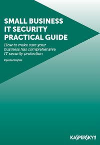 Small Business IT Security Practical Guide